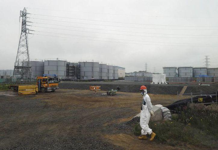 Un trabajador camina junto a los tanques subterráneos de agua en la planta nuclear de Fukushima Dai-ichi. (Agencias)