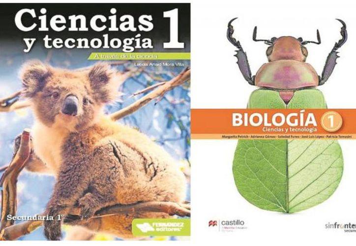 Los nuevos libros de texto gratuito serán repartidos antes del 20 de agosto. (Vanguardia.mx)