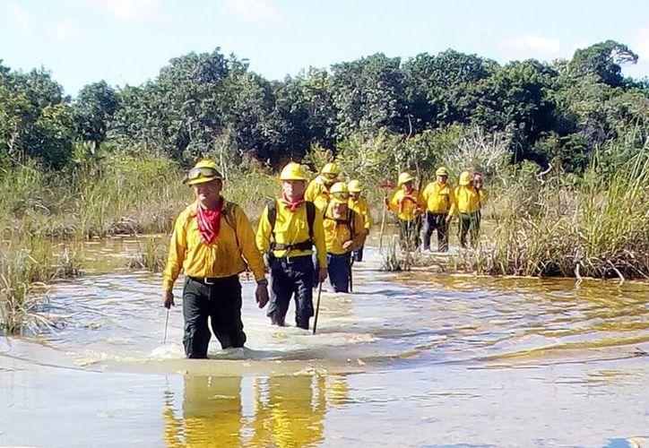 Nueve elementos participaron en los trabajos de control y extinción con una cisterna y dos vehículos de rescate equipados. (Joel Zamora/SIPSE)