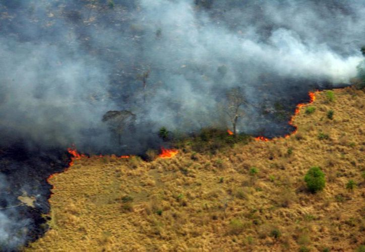 El incendio en el parque nacional China Muerta inició el pasado 14 de marzo. (EFE)