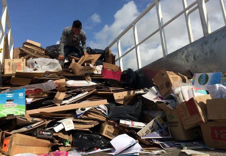 Las madres de familia también ayudan a la separación de las bolsas y la recolección de los residuos. (Adrián Barreto/SIPSE)