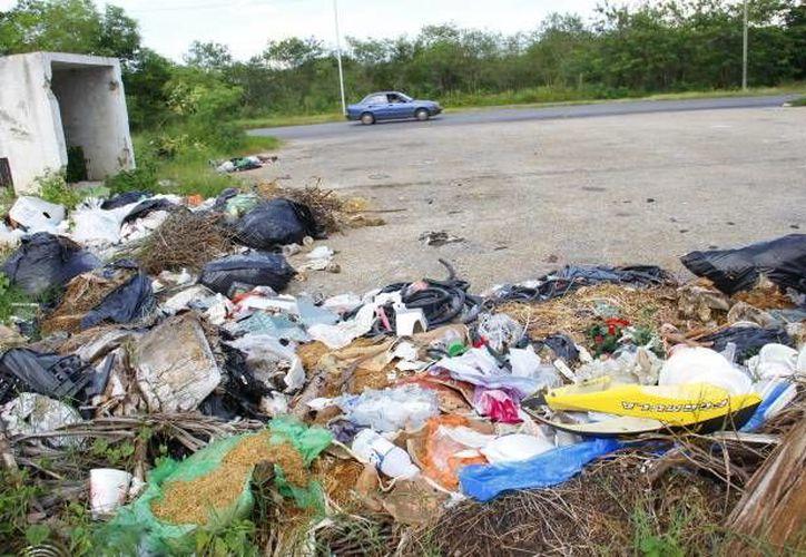 La carencia de límites entre zonas federales y urbanas en los municipios permite que las selvas cercanas a los municipios se conviertan en basureros. (Archivo SIPSE)