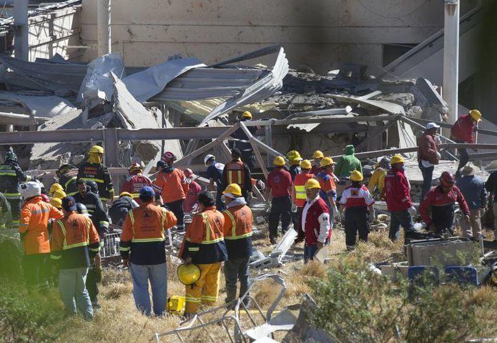 Hay elementos caninos de la Policía Federal apoyando en las labores de búsqueda tras la explosión. (AP)