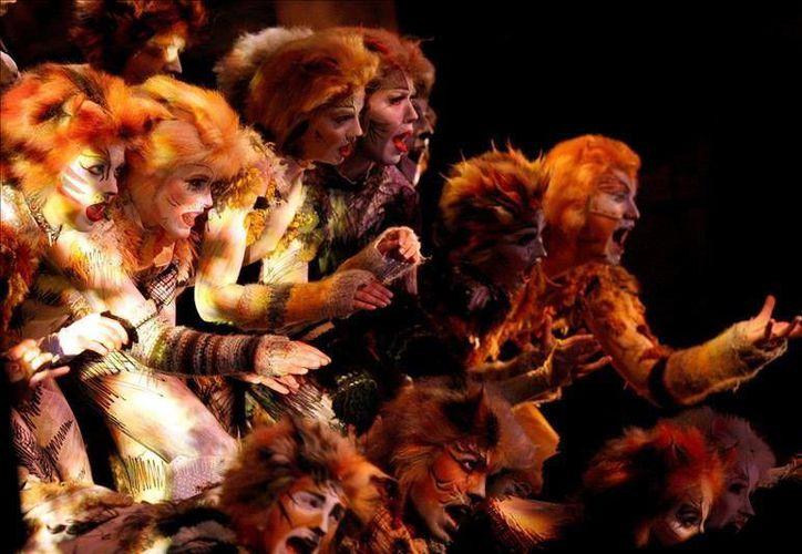 """""""Cats"""" volverá a Broadway este verano después de bajar el telón en el año 2000. (Archivo EFE)"""