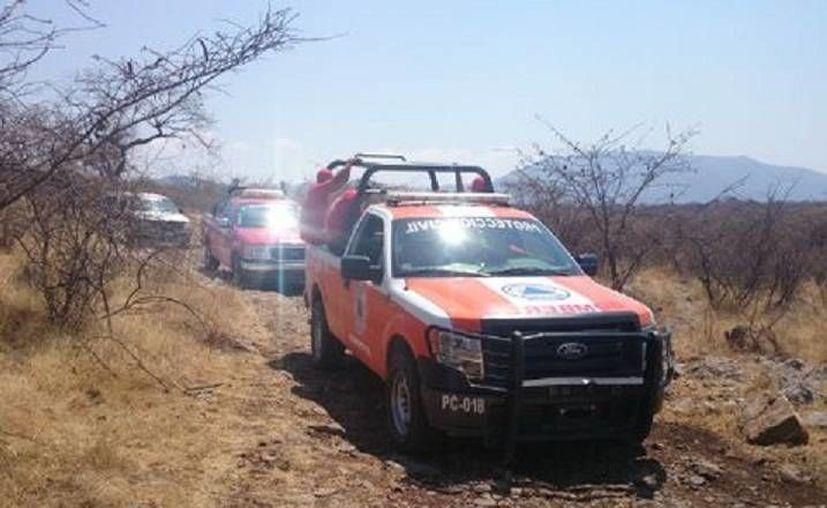 Unos ejidatarios dieron aviso y guiaron a las autoridades a la fosa con los cuerpos en Iguala, Guerrero. (Milenio)