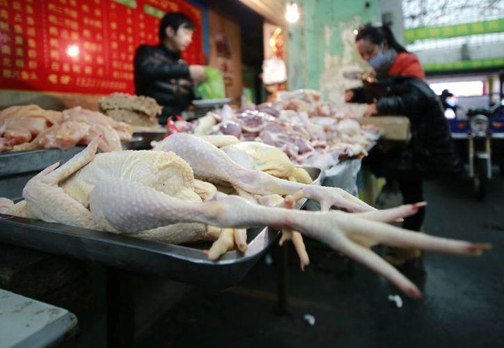 Hasta ahora, no hay indicios del que el virus H7N9 pase de un ser humano a otro. (Agencias)