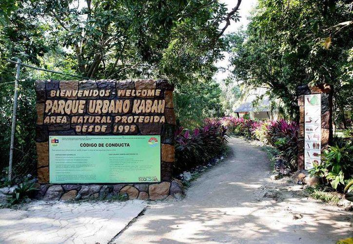 El curso se llevará a cabo durante cuatro meses en el Parque Kabah. (Foto de Contexto/Internet)