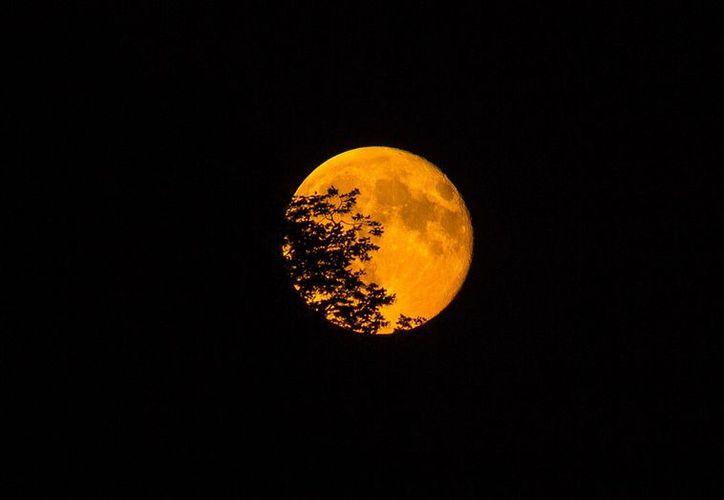 La última súper Luna del año ocurrirá el día 6.