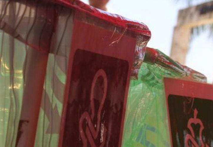El Ayuntamiento pretende llevar la cultura de la separación de residuos a todas las escuelas del municipio.  (Luis Ballesteros/SIPSE)