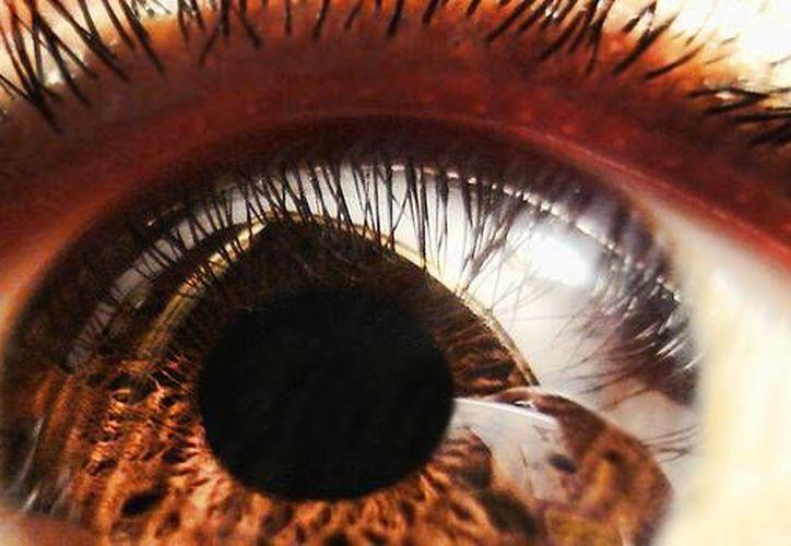 En Yucatán, se cuenta con un banco de ojos o córneas que significa una esperanza de vida y de vista para muchas personas con daños en esos órganos. (Salud Visual)