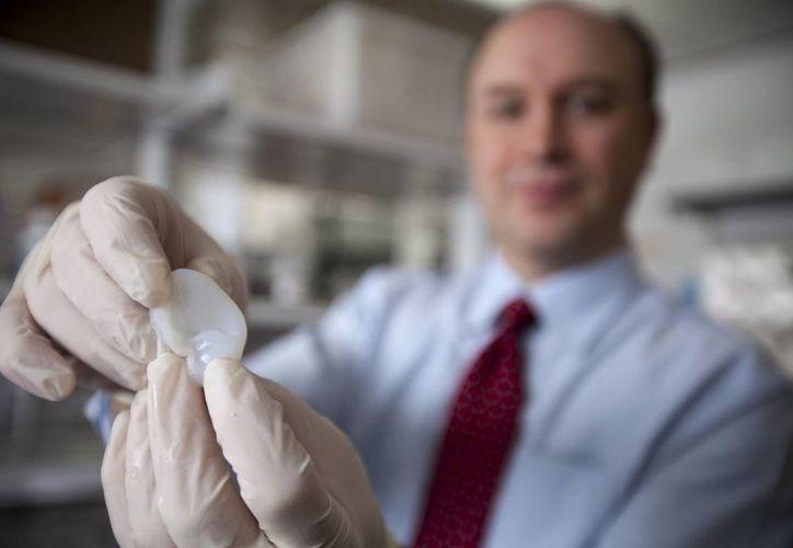 El ingeniero biomédico de la Universidad de Cornell, Lawrence Bonassar, muestra la estructura de una oreja. (Agencias)