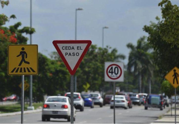 Se considera que de los 400 mil automotores que circulan en la entidad, sólo 120 mil cuentan con póliza de seguro. (Luis Pérez/SIPSE)