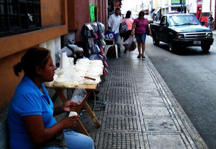Los productos lácteos provienen de los estados de Chiapas y Tabasco. (Martha Chan/SIPSE)