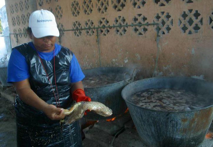 El pepino de mar es una especie con alta demanda en el mercado asiático. Este viernes, se anunció el levantamiento de la veda para la pesca del producto, en las costas de Yucatán. (SIPSE)