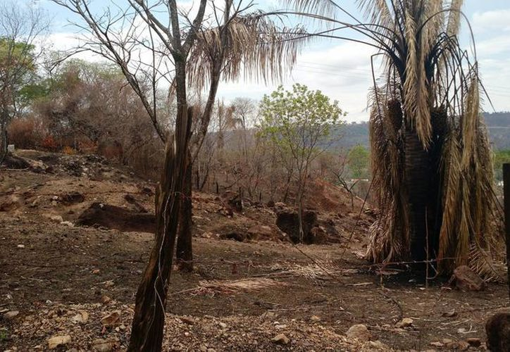 'El Niño' empieza hacer estragos, con ríos secos e incendios de miles de hectáreas. En la imagen, el balneario Melgar, uno de los preferidos por los colombianos, acusa los daños del fenómeno climático. (Archivo/Notimex)