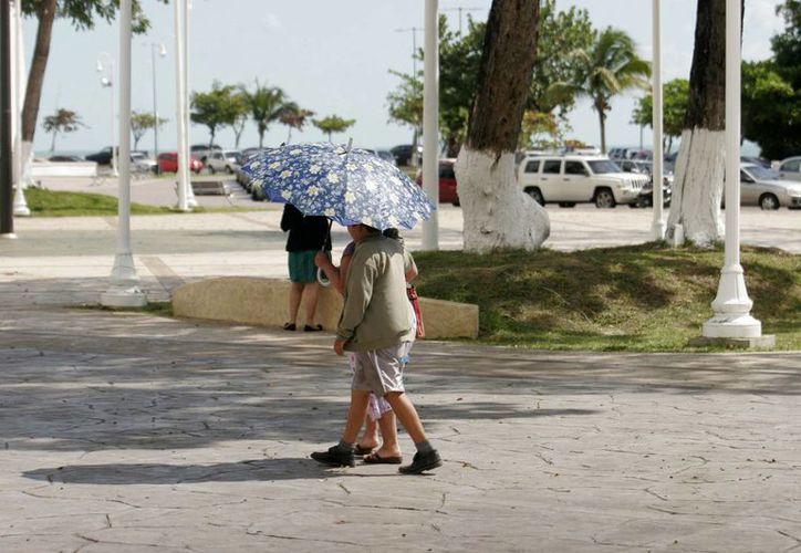 Se recomienda que las personas lleven consigo al menos un litro de agua, ropa clara y algo para cubrirse del sol, como una sombrero, gorra o sombrilla. (Harold Alcocer/SIPSE)