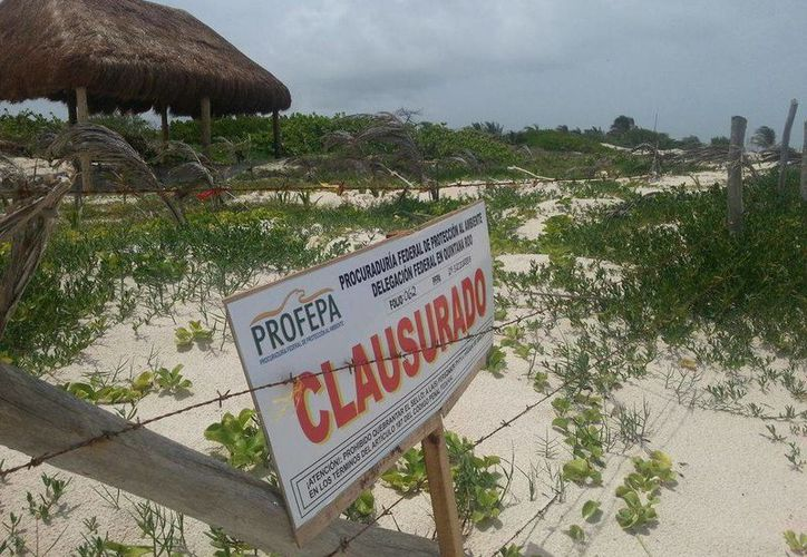 Esta acción fue posible gracias a las denuncias ciudadanas.  La construcción no tenía autorización en materia de impacto ambiental. (Rossy López/SIPSE)