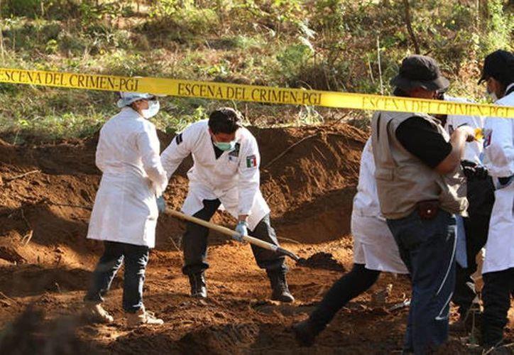 El hallazgo más reciente de una fosa clandestina se realizó en Cosamaloapan, Veracruz: suman 30 cadáveres rescatados. (Milenio)