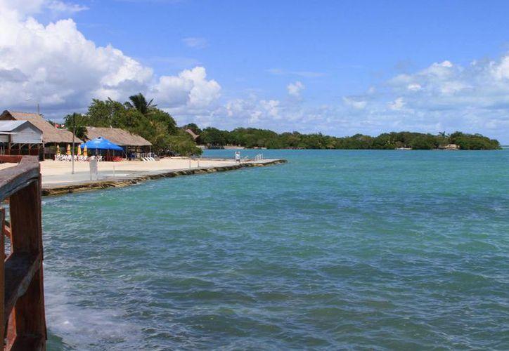 En la Laguna de Bacalar hay más de 130 especies, entre aves, reptiles, moluscos, peces y mamíferos. (Claudia Martín/SIPSE)