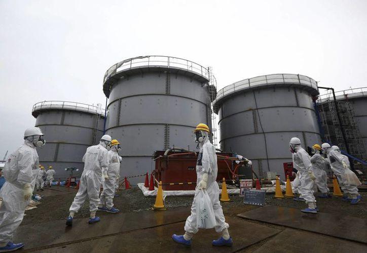 Se estima que en la planta de Fukushima se filtran unas 300 toneladas de agua contaminada al mar por un accidente ocurrido en 2011. (EFE)