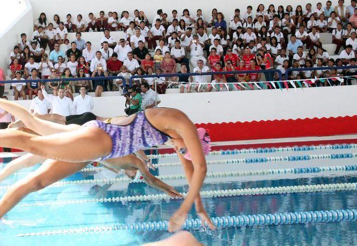 Atletas que brindaron una exhibición en la alberca. (Cortesía/SIPSE)