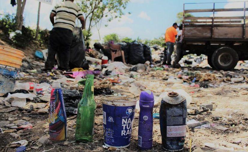 La separación de plásticos ayuda a la economía de cerca de 10 familias de Bacalar. (Javier Ortiz/SIPSE)