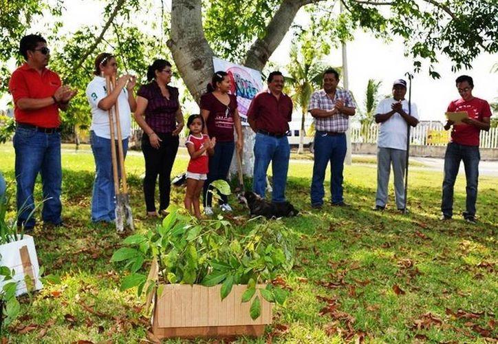 Bacalarenses se congregaron para sembrar los árboles en el área verde del Anfiteatro. (Redacción/SIPSE)