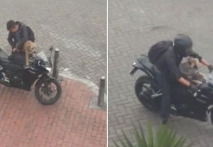"""El motociclista fue identificado como """"el señor del tóner"""". (Foto: Captura del video)"""