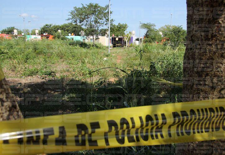 El terreno baldío en el que la menor fue atacada por el abusador. (SIPSE)