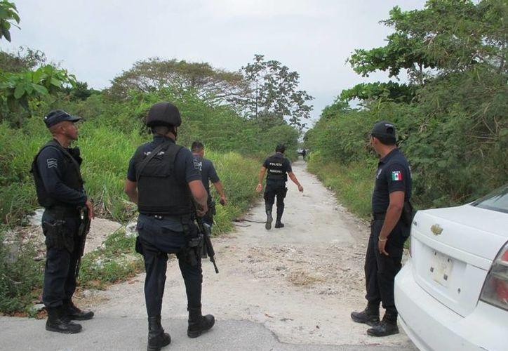 Las autoridades policíacas siguen en busca de los responsables del homicidio de un hombre cuyo cuerpo fue hallado en la colonia Nicte Ha. (Redacción/SIPSE)