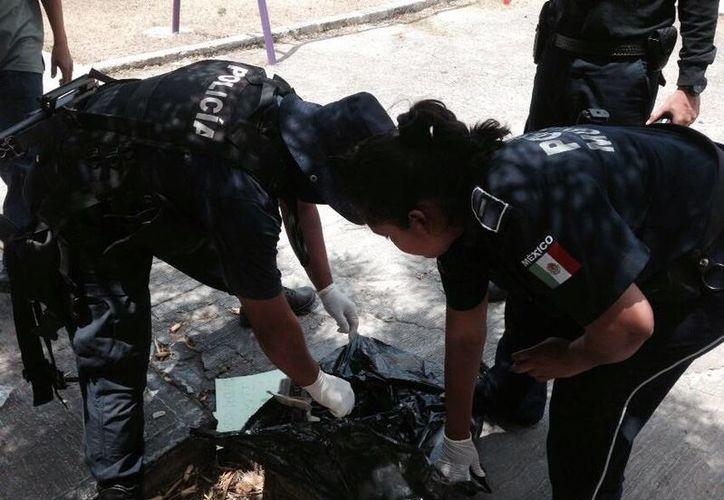 Los agentes revisaron la bolsa y procedieron a abrirla con sus manos cubiertas con guantes de látex. (Cortesía)
