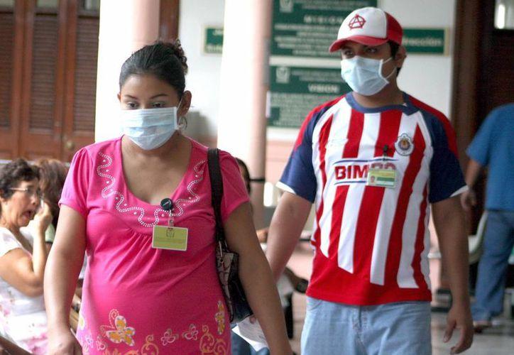 El aumento de concentración de gases de efecto invernadero ocasiona el incremento en alergias registradas en la población de Yucatán. (Milenio Novedades)