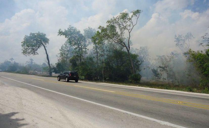Reportan que el incendio no representa peligro para la población. (Tomás Álvarez/SIPSE)
