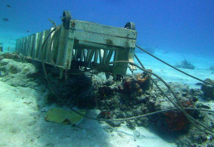 La ampliación del muelle Puerto Maya está causando daños al arrecife Paraíso, de acuerdo con la denuncia del grupo Citymar. (Irving Canul/SIPSE)