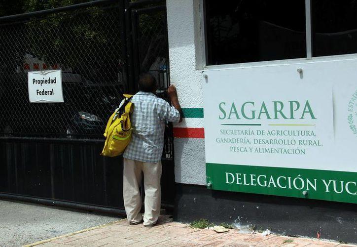 La Sagarpa invita a conocer los planes para productores agrícolas, ganaderos, pecuarios, etc. Imagen de las oficinas de la dependencia. (Milenio Novedades)