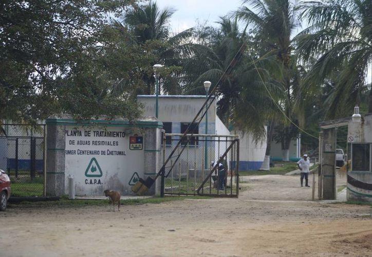 La prioridad de la Conagua para este año es el saneamiento y la no contaminación de las aguas. (Foto de Contexto/SIPSE)
