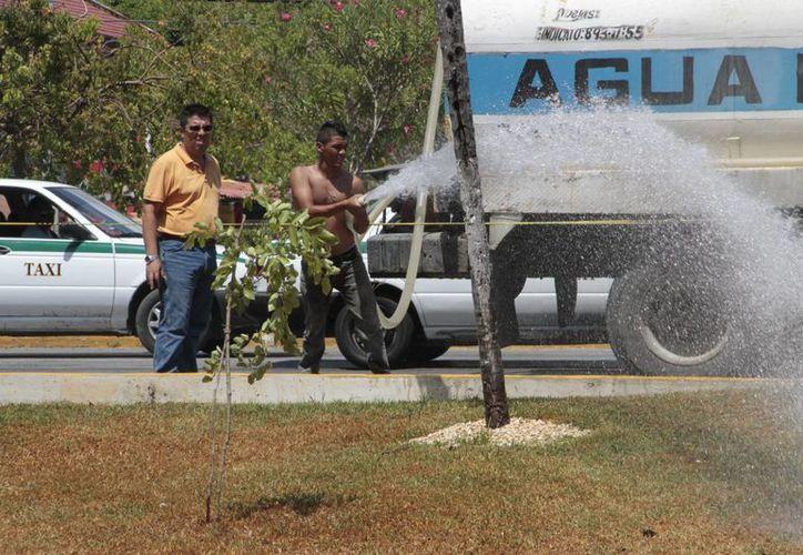 Recientemente se dio a conocer que la calidad del agua potable en Chetumal no cumple con la Norma Oficial Mexicana. (Tomás Álvarez/SIPSE)