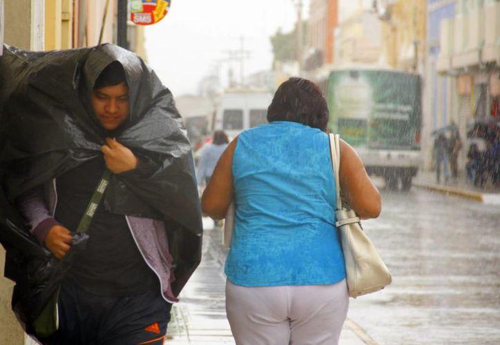 La llovizna fue intermitente durante gran parte del miércoles en Mérida. (Juan Albornoz/SIPSE)