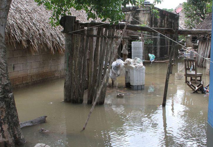 Supervisan las condiciones de las viviendas para determinar cuáles no pueden ser habitadas. (Ángel Castilla/SIPSE)