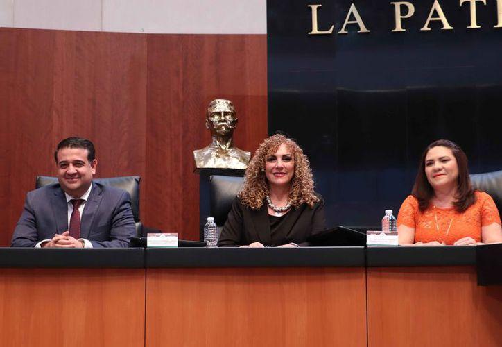 Luz María Beristain presentó ante la Cámara Alta un punto de acuerdo sobre el tema. (Cortesía)