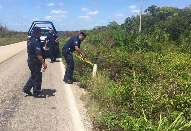 Elementos de la Policía Ministerial acudieron a verificar el reporte de un cuerpo putrefacto. (Benjamín Pat/SIPSE)