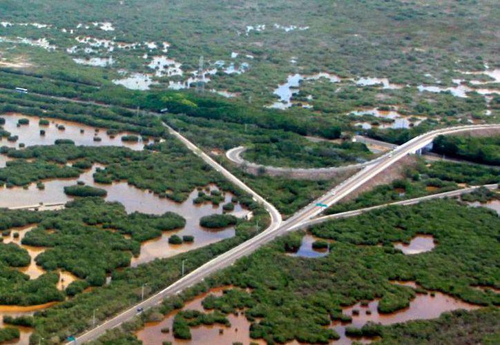 Profepa clausuró obras en la zona de la carretera Mérida-Progreso. (Archivo/SIPSE)