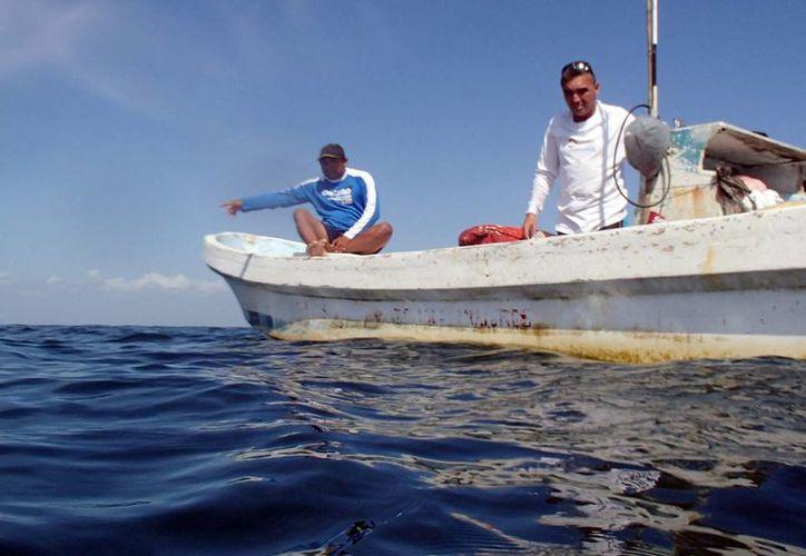 Cada vez más pescadores se convierten en ilegales para mantener su ingreso. (Luis Soto/SIPSE)
