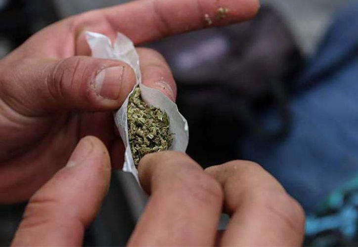 Informó que se limitan estrictamente a actos relacionados con el consumo personal de marihuana, por lo que no se permiten actos de comercio o suministro a terceros. (Excelsior)