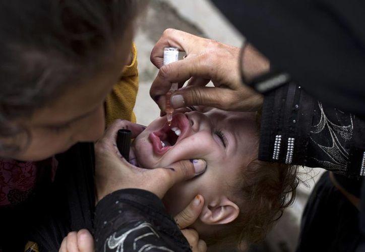 Vacunación de niños contra la polio en Rawalpindi, Pakistán. (Agencias)