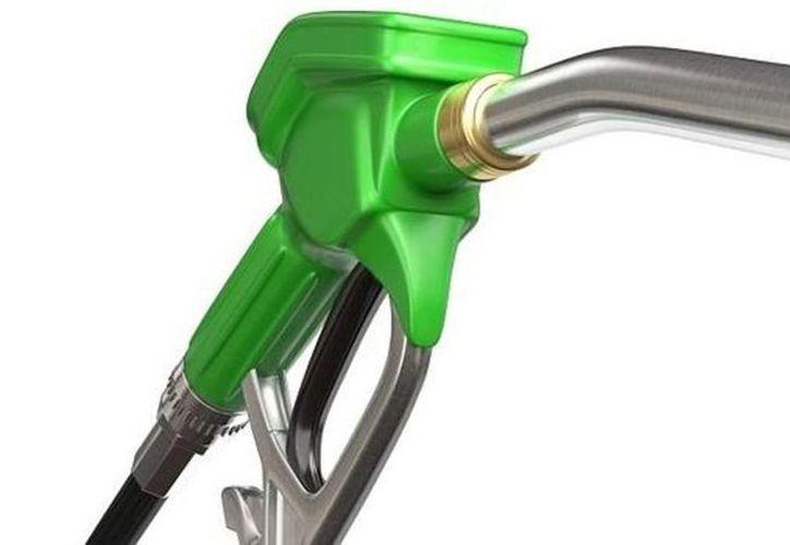 La colaboración de Global Bioenergies con Audi, ha dado como resultado la elaboración de unos 60 litros de esta nueva gasolina. (Vanguardia MX)