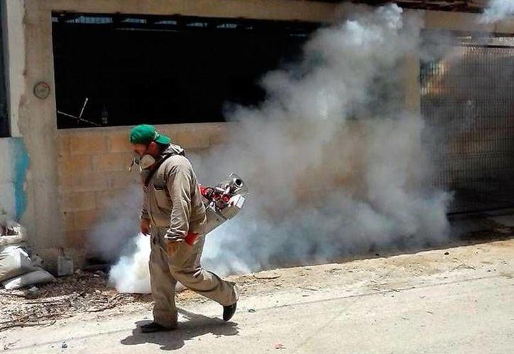 Durante 2016, el zika atacó a 820 yucatecos según cifras de las autoridades. (Archivo/ SIPSE)