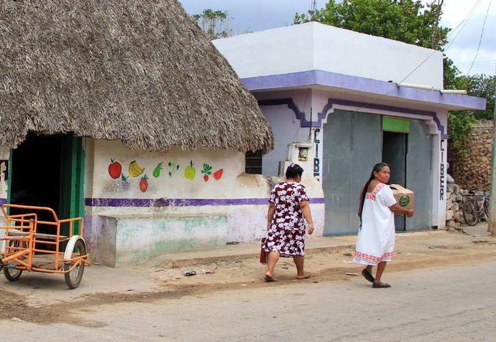 La comunidad estudiantil de la Uady apoya a nueve municipios en condiciones de rezago. (Milenio Novedades)