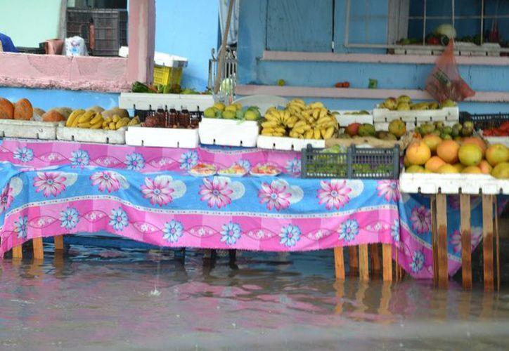Buscan evitar inundaciones en la zona sur de Quintana Roo. (Gerardo Amaro/SIPSE)