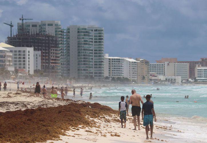 El titular de Sectur reconoció que la presencia de  sargazo afecta la imagen turística de los destinos. (Israel Leal/SIPSE)